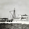 Lou Jean,Built 1946 Consolated Shipbuilding Newport Beach,Luigi Guidi,Later Converted National Steel Shipbuilding,Later sold to Mexico and renamed Bonaza,Sank 1976,