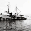 Sea Lark,Converted 165 ATR Navy Tug,Frank Medina,Nick Dragich,Bait Boat,Later Nick Bez,