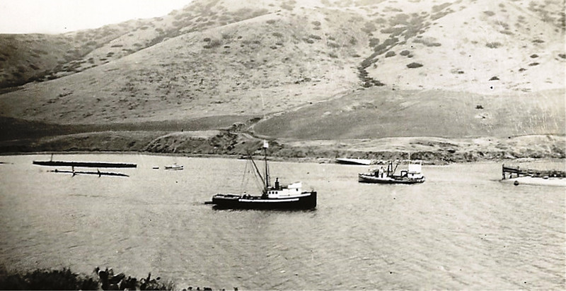 Sea Rider,Built 1927 Los Angeles, Petar Dragich, Pic Taken 1936 Catalina Island,California,