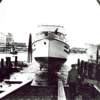 Sea Rose Launching Tacoma 1949,Builders Kazalin Cole,Built for Peter Skarponi and John Zorovich Gig Harbor,Later Owners,Luka Alafetich,Pete Anich,AE A Bertchen,