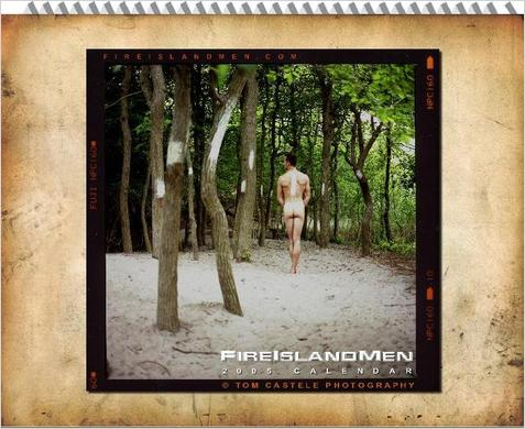 "Calendars count as literature, right?  <blockquote><b>Summary:</b><i> ""...Featuring diverse Fire Island Men in moments of natural beauty, contemplation and harmony with their environment.""</i></blockquote>  Available through <a href=""http://www.fireislandmen.com/index.php?/Fire-Island-Men-Calendar"">Fireislandmen.com</a>"