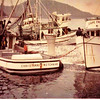 Christian,Built 1944 Kirkland,Laland Daniels,Teresa K,Built 1959 George Jacobsen Seattle,Pat Kristovich,Cape Falcon,Built 1965 Pacific Fisherman Seattle,John Kristovich,Herring Set,