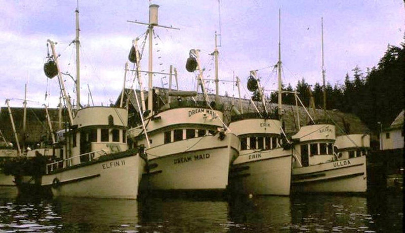 Elfin II,Built 1936 Seattle,Ernest Swanson,Dream maid,Built 1955 Seattle,Dick Hansen,Erik,Built 1959 Seattle,Ulloa,Wooster,Built 1919 Tacoma,Chatham Cannery,