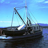 Emma,Built 1914 Seattle,Tender,Harbor Seafoods,1964 Wrangell,George Sumption,George Hicks,Roy Blake,