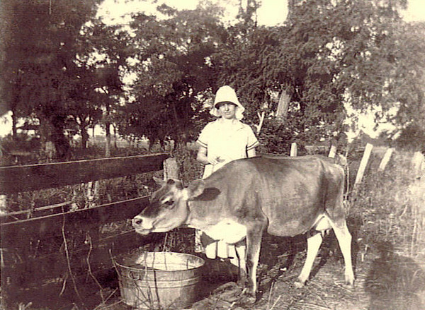 11. Maude on her dairy farm.