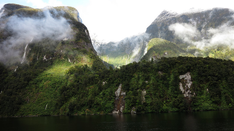 504 Doubtful Sound