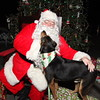 """""""Bight"""" Before Christmas, All Animal Clinic """"Pet Pictures with Santa"""" Key West, 2014.  <a href=""""http://www.keywestchristmas.org"""">http://www.keywestchristmas.org</a>"""
