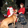 """Bight"" Before Christmas, All Animal Clinic ""Pet Pictures with Santa"" Key West, 2014.  <a href=""http://www.keywestchristmas.org"">http://www.keywestchristmas.org</a>"