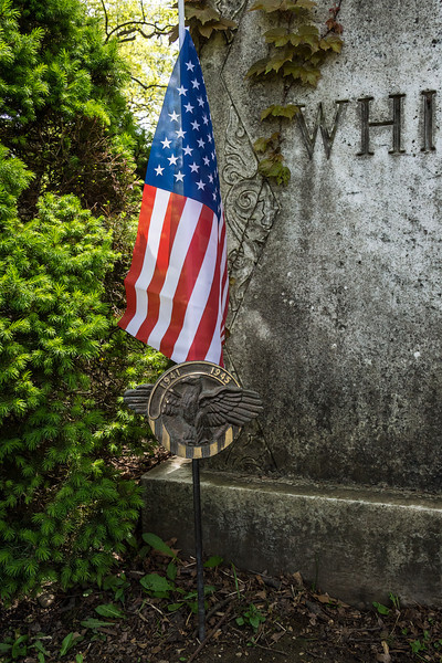 D144-2014  In honor of the country's war dead, for Memorial Day<br /> <br /> Forest Hill Cemetery, Ann Arbor<br /> May 24, 2014.