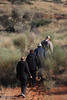 !Xaus Lodge - Morning Nature Walk - Group Walking Behind Our Bushman Guide