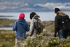 Ushuaia - Harbour and Beagle Channel Tour - Stop and Hike on Island 78