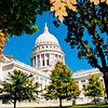 Autumn oaks and clear blue skies frame the National Historic Landmark State of Wisconsin Capitol in its resplendent glory (USA WI Madison; RAO 2012 Nikon D300s Image 3504)