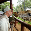 Kissing a giraffe