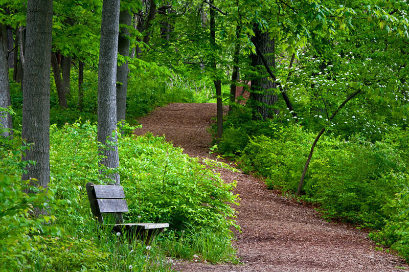 ARB115H                      A trail winding it's way through the spring woods invites hikers to explore the grounds of The Morton Arboretum, Lisle, Illinois.