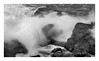 Pacific Grove Coast 2 b&w