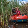 The equivalent to bushbashing, on a boat: squeezing through a maze of narrow passages in the Sinclair Wetlands
