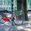Red Bike with Green Basket