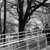 A commuter bikes down the ramp towards the Charles River Bike Path on Saint Patrick's Day. Photo by Alex Staikos
