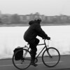 February 27th, 2014: Bicyclist on the Esplanade. By Alexis Gordon.