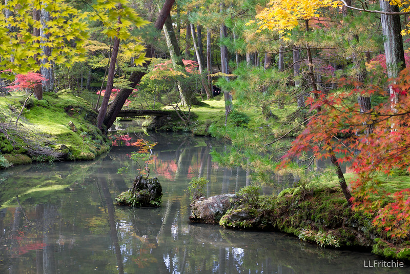 The author of the Sakuteiki, which is the oldest book on gardening in Japan, said to take care in forming the shape of a pond because the shape holds water and water is life.