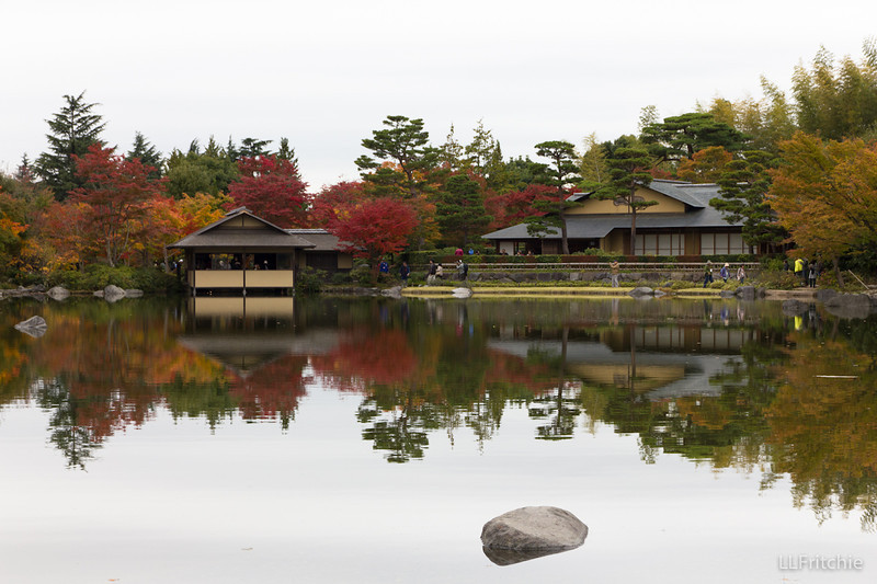 After walking a while through plain open spaces in the park, we were astonished by the beauty of this Japanese garden.