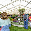 blenheim flower tent Panorama1