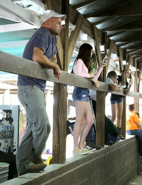 Bob Kowalski watches the fowl judging on the opening day of the Lorain County Fair. His son was showing his chickens. BRUCE BISHOP/CHRONICLE
