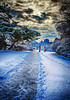 2014-02-09_Changdeokgung_Sun_Path_HDR-7333-cropped2