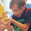 SAM HOUSEHOLDER | THE GOSHEN NEWS<br /> Taten Faulkner, 9, of Warsaw, looks at a duckling Wednesday at the Kosciusko County Fair in Warsaw.