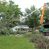 Roger Schneider | The Goshen News<br /> DUSTIN KNOX OF Davey Tree Service out of Michigan, works early Wednesday morning to clear a fallen tree from power lines along Riverside Avenue neark Baker Street  on Goshen's west side.