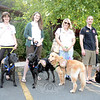 Waiting for happy hour on The Villa patio are, from left, Sarah Pellizzari with Putter,  Mary Skene, with Stryder, Melinda Hoover with Gracie, and Jaceson Cole, with his dog Mellow.   (Bobowick photo)