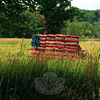 Just in time for the Fourth of July, passersby on Route 302 can enjoy the efforts of Stephanie and Shannon Paproski of Castle Hill Farm, who this week created an American flag from painted hay bales. The Sugar Lane farm brings smiles to the faces of those passing by, throughout the year, with hay bales crafted into various forms. Past hay constructions have included a tractor and most recently, the Illumination Entertainment Minions. (Crevier photo)