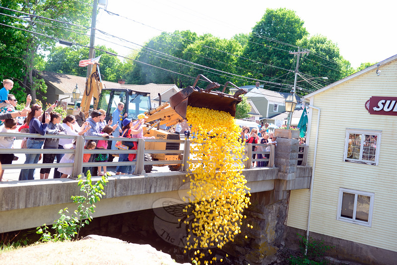 Spectators made room along the bridge railing for the bucket to tip its load of bright yellow ducks into the Pootatuck Saturday, May 23, during the annual Great Pootatuck Duck Race, hosted by the Lions Club. (Bobowick photo)