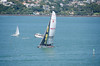 Sailing is a popular activity out in the Hauraki Gulf.