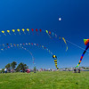 Bug Light Kite Festival 3 20x30