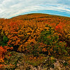 Hiker's view of blazing autumn foliage from Summit Creek Scenic Area Observation Tower within Porcupine Mountains Wilderness State Park (USA MI Ontonagon)