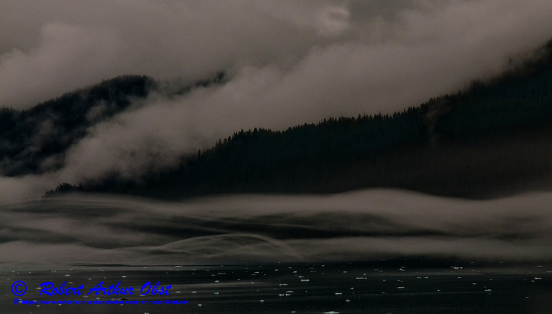 Eerie swirling fog embraces the forested mountains bordering iceberg infested College Fjord within northern Prince William Sound near the Gulf of Alaska (USA Alaska Whittier College Fjord; Obst FAV Photos 2011 Nikon D300s Image 8628)