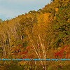 Hiker's and trail runner's often enjoy blue skies and brilliant colors during autumn within Indian Lake County Park (USA WI Cross Plains; Obst FAV Photos 2012 Nikon D300s Image 3649)