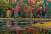 Fall Color and Beaver Pond in Algonquin Provincial Park, Ontario