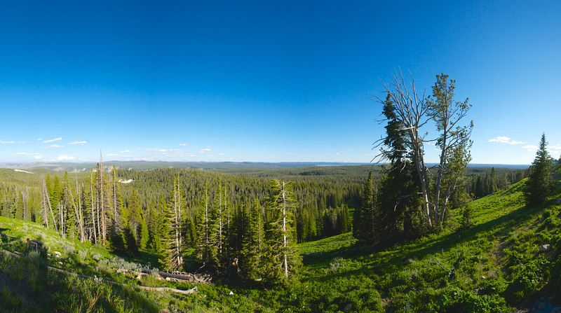 Yellowstone Vista Panorama