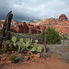 Sedona is a city that straddles the county line between Coconino and Yavapai counties in the northern Verde Valley region of the U.S. state of Arizona. According to 2005 Census Bureau estimates, the population of the city is 11,220.<br /> <br /> Sedona's main attraction is its stunning array of red sandstone formations, the Red Rocks of Sedona. The formations appear to glow in brilliant orange and red when illuminated by the rising or setting sun. The Red Rocks form a breathtaking backdrop for everything from spiritual pursuits to the hundreds of hiking and mountain biking trails.<br /> <br /> Sedona is named after Sedona Miller Schnebly (1877–1950), the wife of the city's first postmaster, who was celebrated for her hospitality and industriousness.