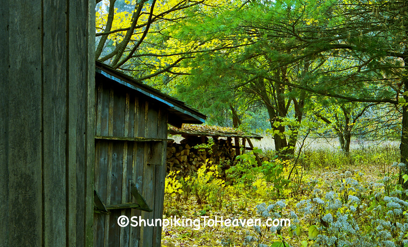 Autumn at the Shack, Leopold Memorial Reserve, Sauk County, Wisconsin
