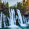 """""""Burney Falls at Sunset"""" Burney Falls State Park has been on my list of awesome waterfalls to visit for a while! I had the chance to go at the last minute and we caught it just as the sun was setting! Quite the roar from the falls. It is a spring fed falls moving over 100 million gallons per day!! It was hard to get a sense of just how large it is at 129 feet tall and twice as wide. In the summer it must be quite the swimming hole! Burney Falls State Park is about an hour East of Mt Shasta and should be added to the California must see list! More info is here on the state park website. Enjoy! <a href=""""http://www.parks.ca.gov/?page_id=455"""">http://www.parks.ca.gov/?page_id=455</a> Copyright John Harrison Photography — at McArthur-Burney Falls Memorial State Park."""