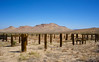 Remains of Desert Fence Post