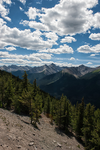 Sulphur Mountain View