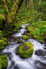 Ruckel Creek, Columbia River Gorge, Oregon