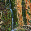 Death_Valley_Waterfall_Dripping_Wall_of_Ferns