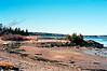 Acadia NP 3/15/11 F-1N - FD 35-105 3.5 - Ektar 100, Low tide