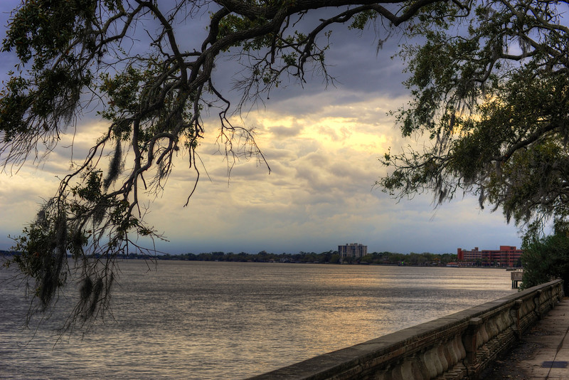 Photos taken while walking along the St. John's River in Jacksonville, Florida.