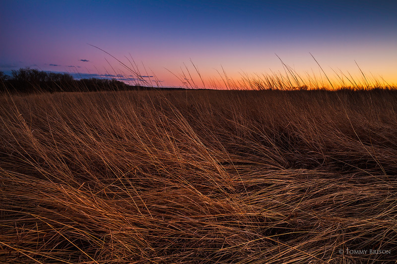 Shot at Sunset on March 12, 2014 at the Prairie at Burr Oak Woods Conservation Area.  Missouri Conservation has so many beatiful aresa for landscape photographers to shoot images at and for everyone to enjoy.
